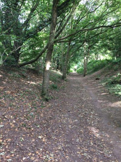 Marford quarry path