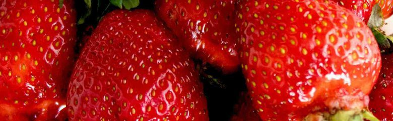 What to Sow and Grow in January - Strawberries