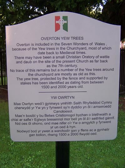 Overton yew trees sign